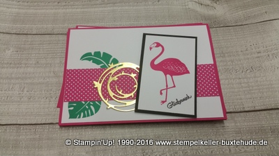 stampin-up-hamburg-buxtehude-pink-pep-pop-of-paradise-stempel-stanzer