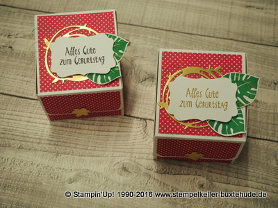 stampin-up-you-tube-video-anleitung-tutorial-schräge-box-pink-pep-pop-of-paradise-hamburg-buxtehude-stempel-stanzer-basteln