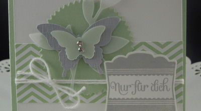 Stampin'Up! Velum Designerpapier In Color Schmetterling