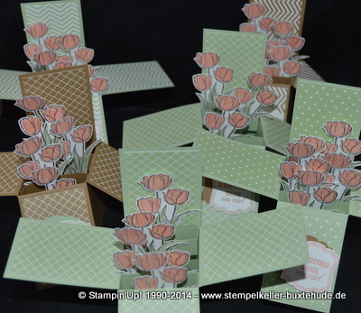 Stampin'Up! Card in a Box