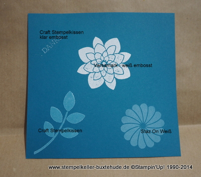 stampin-up-craft-staz-on-stempeln