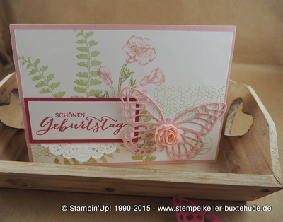 kreativ-set-accessoires-schmetterlings-gruß-stampin-up