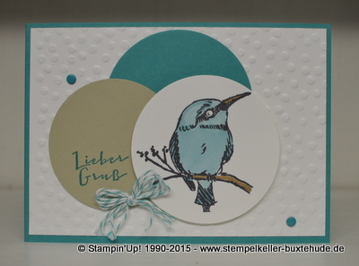 stampin-up-sale-a-bration-eisvogel-stempel-mix-marker