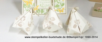 Stempelset-Kinda-Electic-Stampin-Up