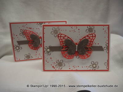 stampin-up-schmetterling-butterfly-petite-petals-stempel-stanzer-buxtehude-hamburg-bremen-hannover