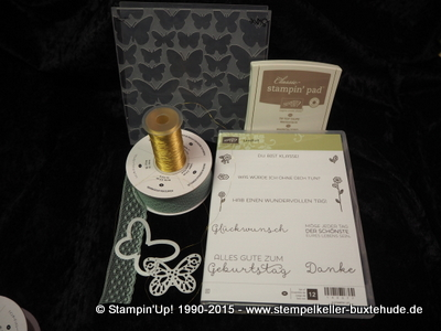 stampin-up-schmetterling-schwarm-in-color-big-shot-stempel-stanze-hamburg